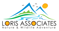 Loris Associates